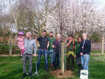 Tree_Planting_group_opt